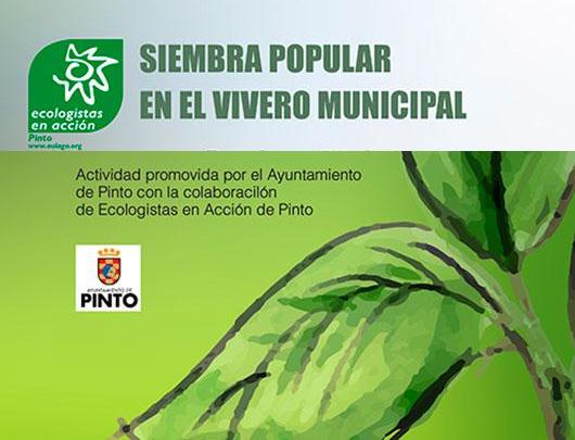 Siembra en el Vivero Municipal de Pinto