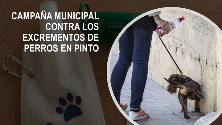 Campaña contra los excrementos de perros